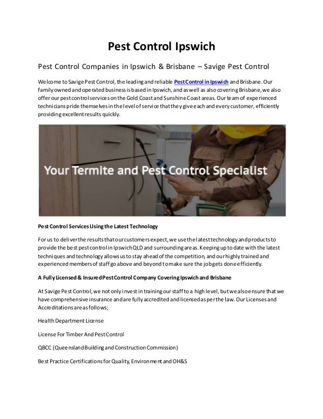 Pest Control Ipswich Pest Control Ipswich Pest Control Services