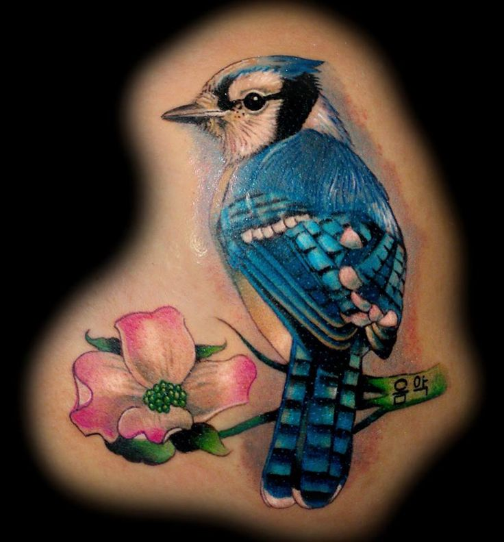 Bluejay Tattoo by Krystof, Bluenote Tattoo, Las Vegas, NV