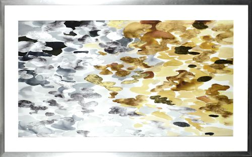 Lily Pond Reflections  16336