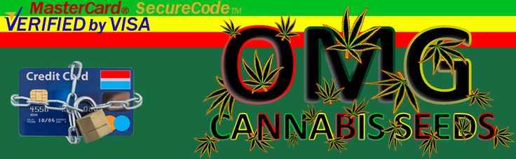 we take pride on the High strength, High THC and Fast Flowering marijuana strains we have for sale.Know more at omg-cannabis-seeds.co.uk