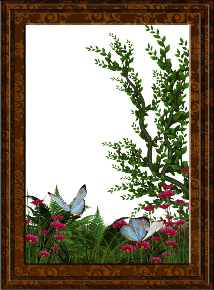 Garden Frame By Collect And Creat
