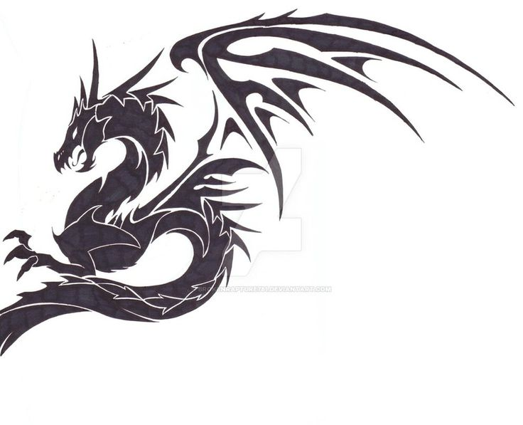 Cross's Dragon Tattoo by BrokenRapture781 on DeviantArt