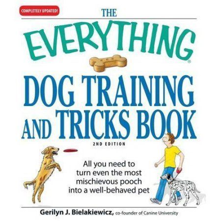 how to toilet train your dog when you work