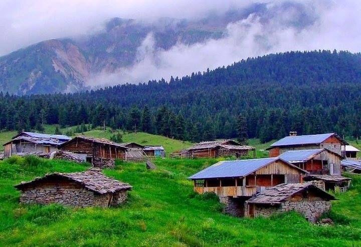 pınarlı köyü,şavşat-artvin