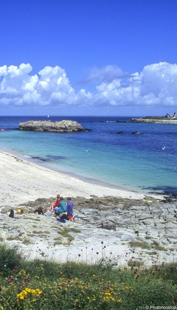 Observer les oiseaux dans l'archipel des Glénan | Finistère | Bretagne | #myfinistere