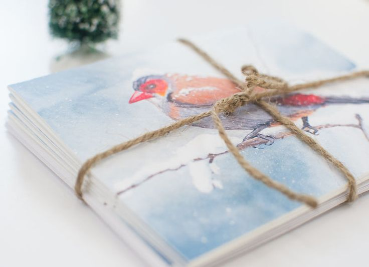 Winter Bird - 5 Greeting Card Set