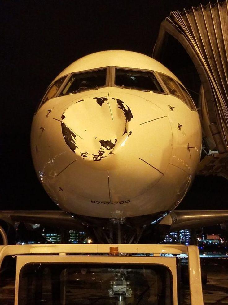 Los jugadores de Oklahoma City Thunder, equipo de la NBA, compartieron en sus redes sociales algunas fotografías que muestran los daños que sufrió el avión en el que viajaban luego de sufrir un accidente, lo que despertó la polémica fue con lo que aparentemente chocó este. Y es que al parecer se trata de un objeto desconocido. Su impacto provocó que la nariz del avión en el que viajaban los jugadores y que descendía a un aeropuerto de Chicago, EE.UU. se hundiera. Hay quienes aseguran que los…