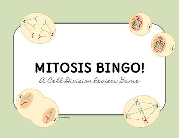 This Mitosis BINGO Review Game is the perfect activity that is both fun and instructional. Students will enjoy playing a game while also getting to review for extra practice or before a test or quiz. This BINGO is unique because not only do the cards contain Mitosis and Cell Division Vocab terms, but it also includes images of cells in the different phases of Mitosis! #biology #mitosis #celldivision #tpt #wardbiology