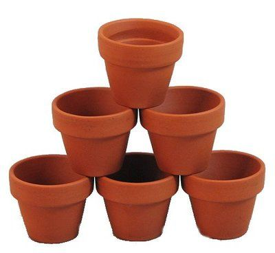 Categories Page 1 Hirt S Gardens In 2020 Small Clay Pot Clay Flower Pots Clay Pot Crafts
