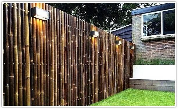The Bamboo Garden Best Gardening Tips And Ideas In 2020 Fence