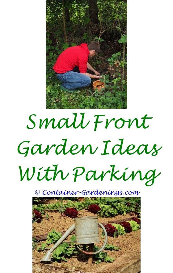 Starting A Backyard Garden | Garden Ideas, Gardens And Backyard Garden Ideas