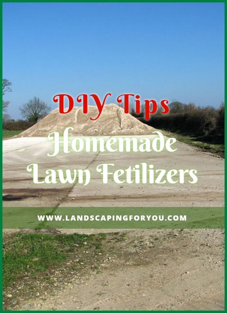 Looking For Proven Ways On How To Diy Lawn Fertilizer Read These Guides Clic Fashionshoot Fashioninsta Fashiontrend Fashion Lawn Fertilizer Diy Lawn Lawn