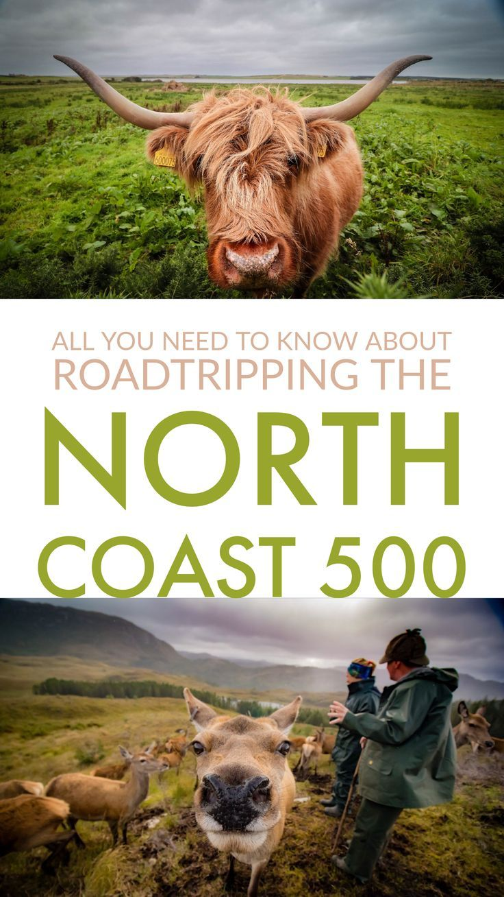 Scotland's North Coast 500 has been hailed as one of the world's greatest road trips! Beauty awaits in the Scottish Highlands!