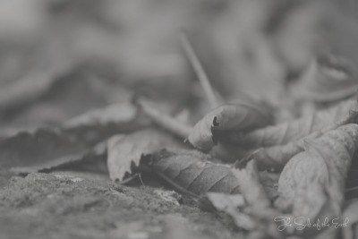 Wat betekent vasten? Door vasten de oude mens afleggen
