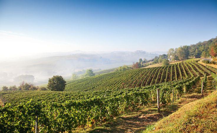Piemont, die perfekte Region für romantische Hochzeiten und Hochzeitsfeiern in Norditalien