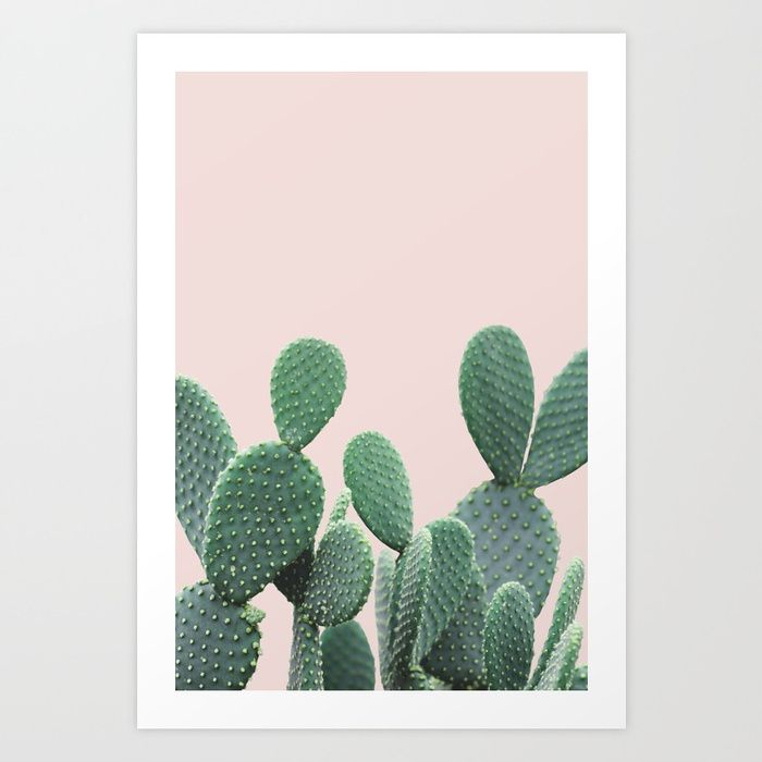 Cactus on Blush Art Print by Summer Sun Home Art || Home Decor DIY, Home Decor on a Budget, Apartment Decorating on a budget, Apartment Decorating College, Dorm Room Ideas, Dorm Room Decor, Dorm Decor, Wall Decor, Wall Art, Gallery Wall, Tumblr Room Decor DIY, Boho Chic Decor, White Aesthetic, Modern Vintage, Midcentury Modern, Interior Decorating, Scandinavian Interior, Nordic Interior, Blush Grey Bedroom, Home Office Ideas, Workspace, Desk Ideas, Bathroom, Kitchen