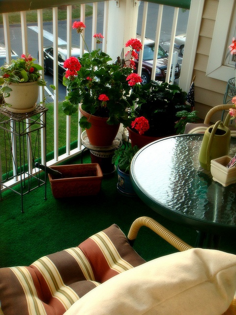 Best 25 apartment balcony garden ideas on pinterest for Plants for small apartment balcony