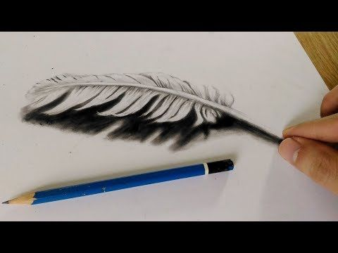 How To Draw 3d Feather Cool 3d Trick Feather Art Feather Art Drawing Feather Art Feather Drawing