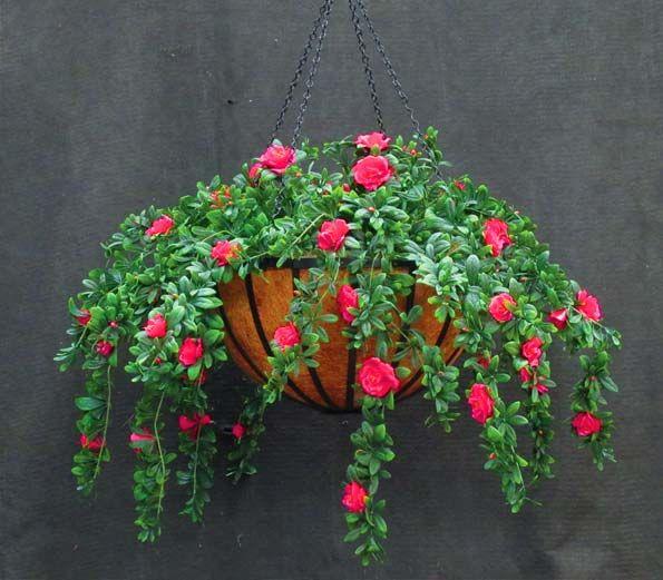 25 unique artificial outdoor plants ideas on pinterest. Black Bedroom Furniture Sets. Home Design Ideas