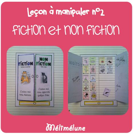 cahier interactif lecture - fiction vs non fiction