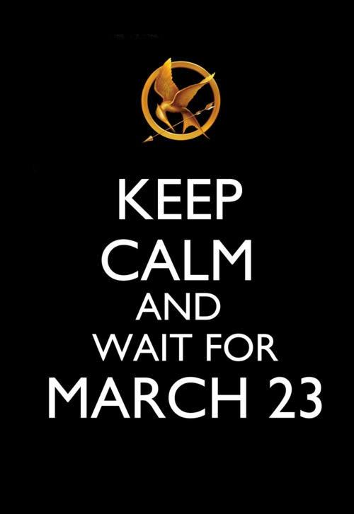 Hunger GamesBirthday