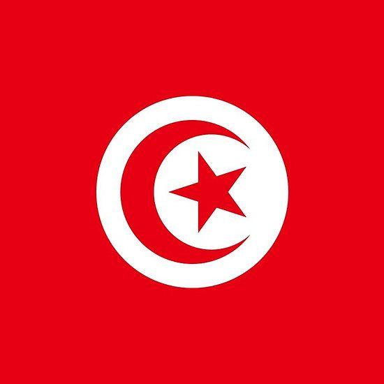 Tunisia Flag Stickers