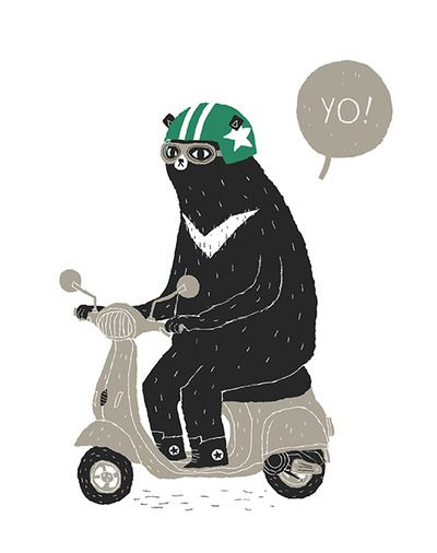scooter bear- old pic, reworked.