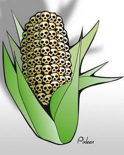 » Flashback: Escaped, Mutated GM Maize on the Loose Maybe Carrying AIDS Virus Alex Jones' Infowars: There's a war on for your mind!