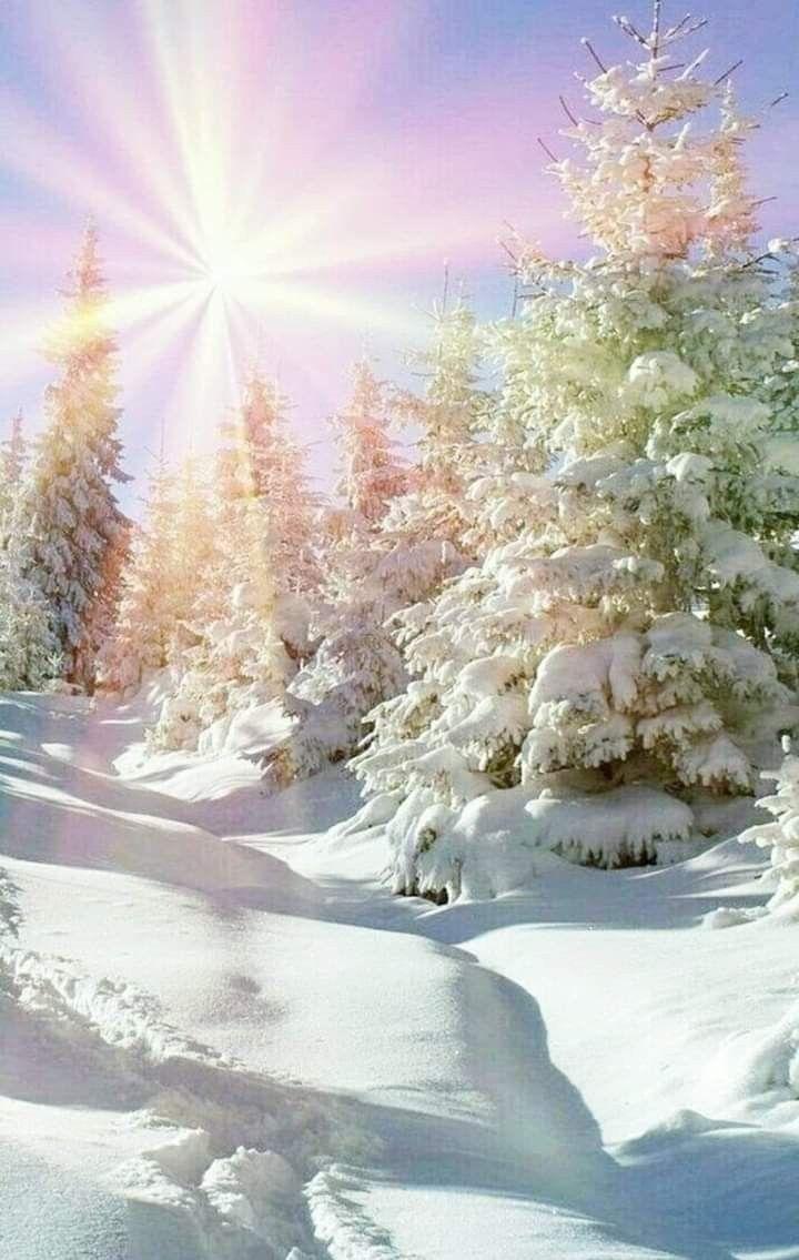 Pin By Jeaniepatricktucker On Winter Wonderland Winter Nature Winter Pictures Winter Scenery