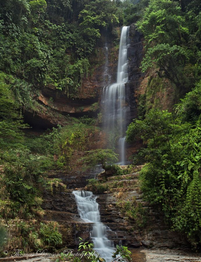 Cascada Juan Curì en el municipio del Páramo  In the Heart of the Jungle by Thomas Dawson on 500px