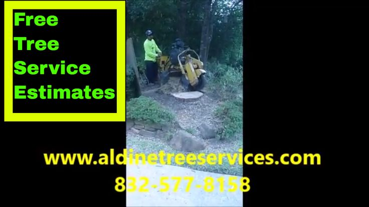 https://aldinetreeservices.com/ How much does it cost to grind a tree stump?  The cost to grind a tree stump varies, and there are many important components to provide an accurate quote.  Please visit our Google Blogger posting for more information.  It can be found here:   https://houstontreeremoval.blogspot.com/2017/11/how-much-does-it-cost-to-grind-stump.html