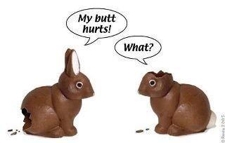 Chocolate Bunnies Talking: Laughing, Funny Bunnies, Jokes, Easter Bunnies, Funny Stuff, Humor, Funnies, Happy Easter, Chocolates Bunnies