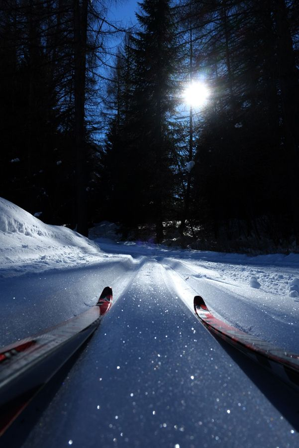 XC SKIING by Pierluigi Orler on 500px