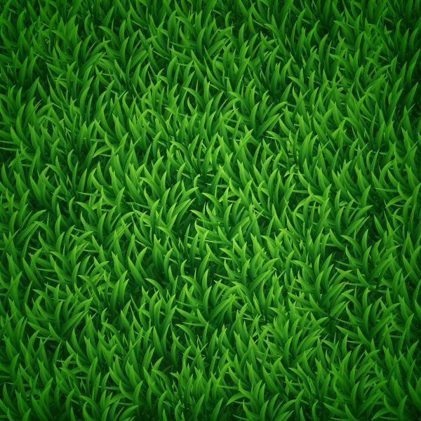 tuto create a vectorial grass