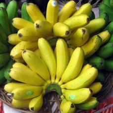 Cara Menurunkan Berat Badan Dengan Buah Pisang http://www.perutgendut.com/videos/view/cara-menurunkan-berat-badan-dengan-buah-pisang/271 #Food #Kuliner #News #Video
