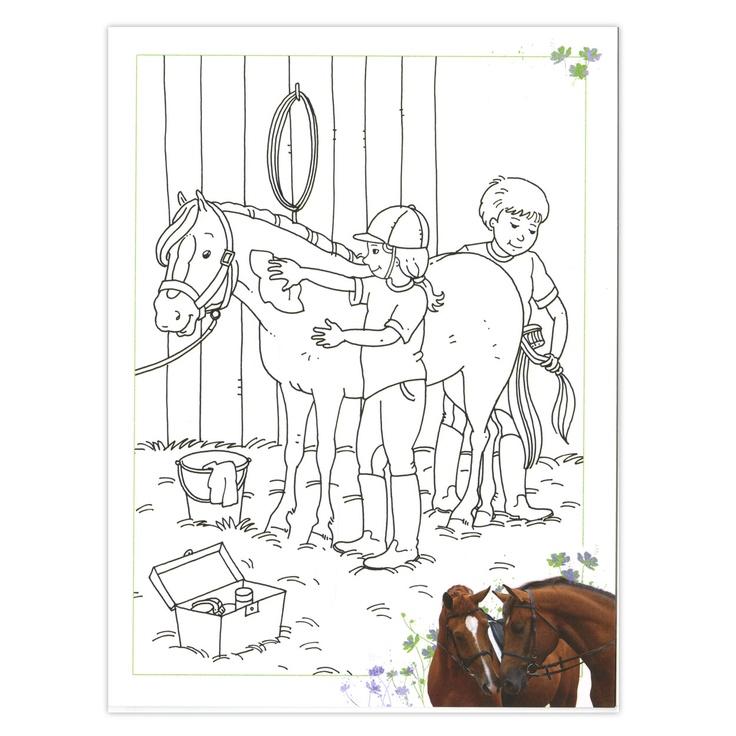 Kleurplaten Van Wilde Paarden.Kleurplaten Topmodel Paarden Nvnpr