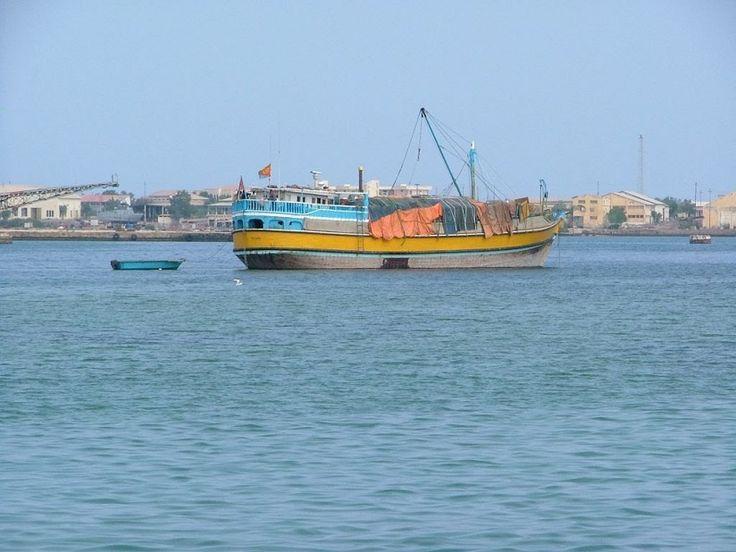 Απίθανες φωτογραφίες από την Ερυθρά Θάλασσα