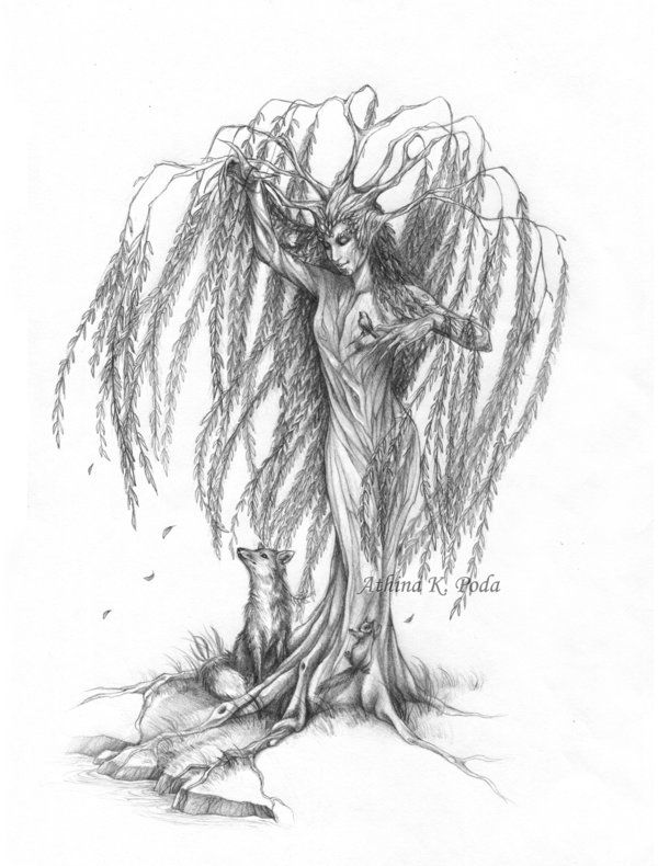 Willow Weep No More by Achen089.deviantart.com on @deviantART