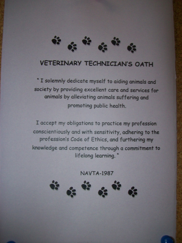 Thank A Vet - A Patriotic American Poem - ellenbailey.com