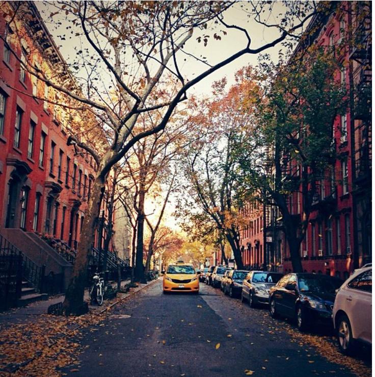27 best Autumn In The City images on Pinterest | Autumn ...
