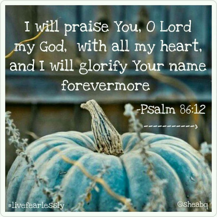 """I will praise You, O Lord my God, with all my heart, and I will glorify Your name forevermore"" Psalm 86:12"