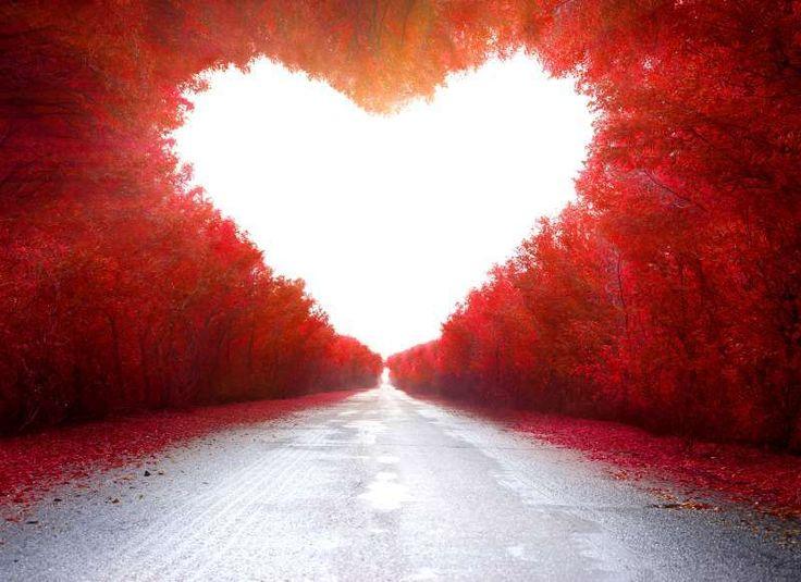 Γιορτάζοντας την ημέρα της Αγάπης