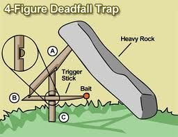 survival trapping techniques - Google Search