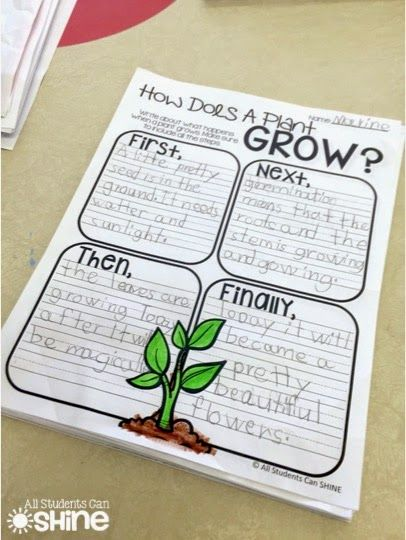 SO many ideas for a plant unit! Perfect for spring :)