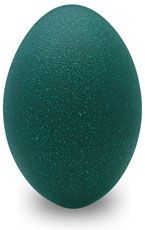 Emu eggs.  This is a place to buy all kinds of different eggs for crafting.