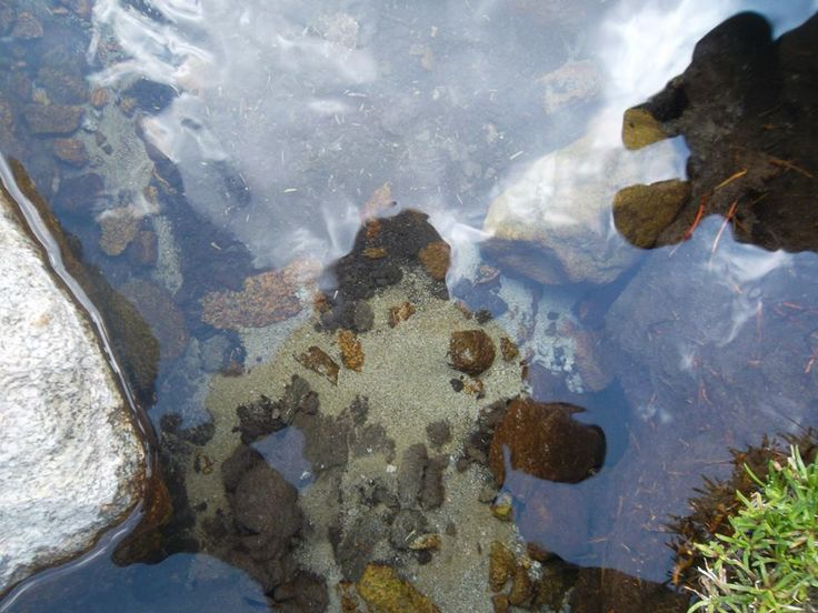 Espejo de Agua Dulce