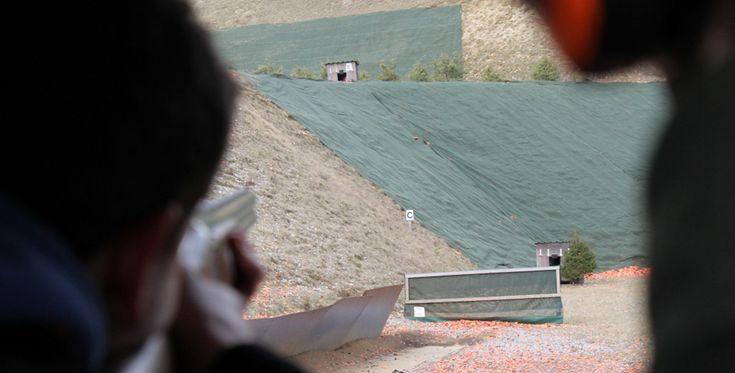 Schrotflinte schießen in Hartenholm, Raum Neumünster #Waffe #Sport #Gewehr