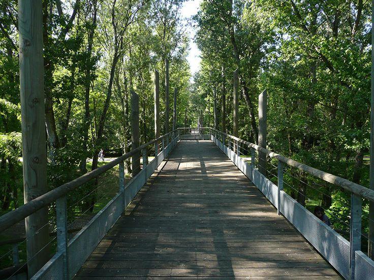 11 best bridges images on pinterest for Oxigen landscape