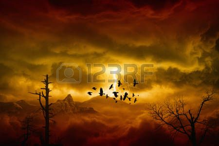 raven crow: Apocalyptic dramatic background - lightnings in dark red sky, flock of flying ravens, crows in dark red moody sky Stock Photo
