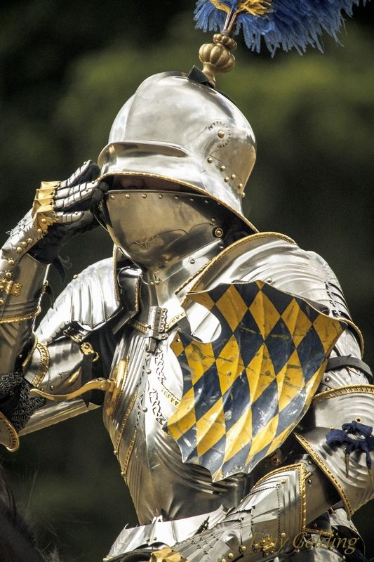 Gothic armor Tournamet joustring Medieval renaissance knight shield